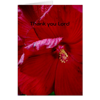 Thank you Lord Card