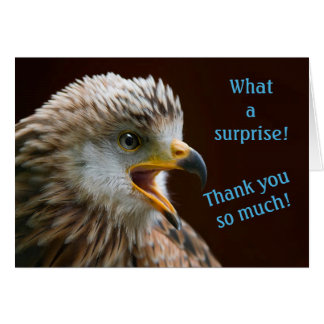 Thank You Notes for Surprise, Surprised Bird Photo