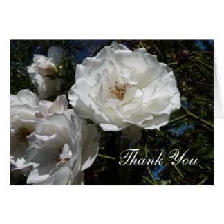 Thank You Notes - White Roses