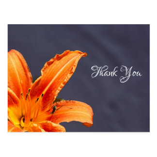 Thank You Offset Day Lily Postcard