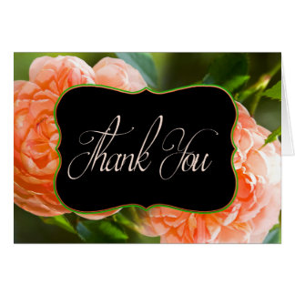 Thank You - Peach Rose Collection Card