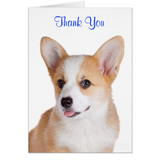 Thank You Pembroke Welsh Corgi Greeting Card