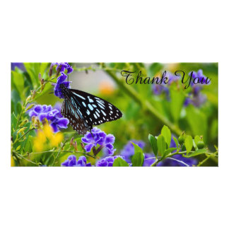 Thank You photo card - Blue Tiger Butterfly