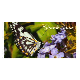Thank You photo card - butterfly on flower