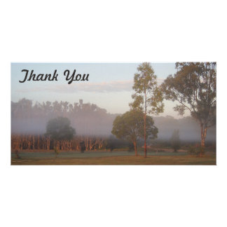 Thank You photo card - Kangaroos in the fog