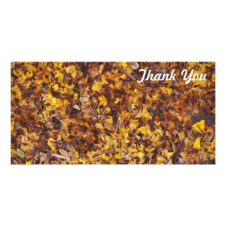 Thank You photo card - Leaf litter