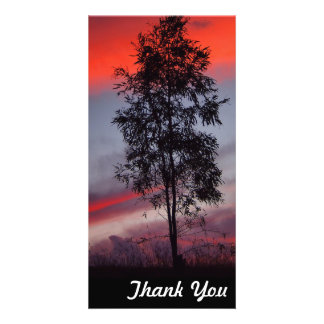 Thank You photo card - Stormy sunset