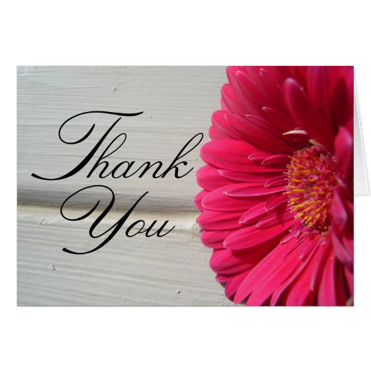 Thank You Pink Daisy Greeting Card