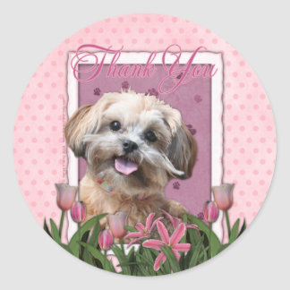 Thank You - Pink Tulips - ShihPoo - Maggie Classic Round Sticker