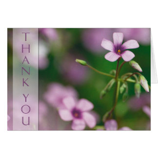 Thank You - Pink Wood Sorrel Greeting Card