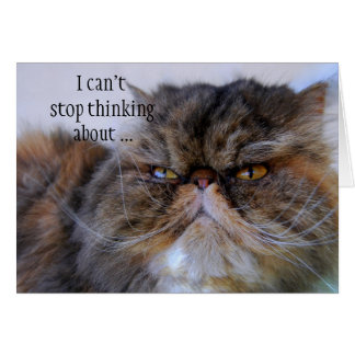 Thank You Proud Calico Persian Kitty Card
