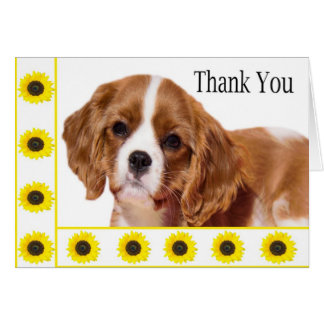 Thank You Sunflowers Cavalier King Charles Spaniel Card