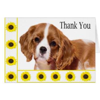 Thank You Sunflowers Cavalier King Charles Spaniel Card