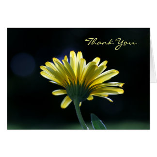 Thank You Sunlit Yellow Daisy Beautiful Flowers Card