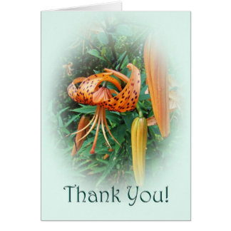 Thank You Turk's Cap Lily Wildflower Card
