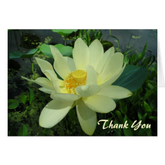 Thank You yellow water lily flower Card