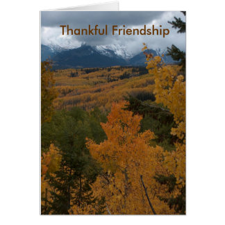 Thankful Friendship Card
