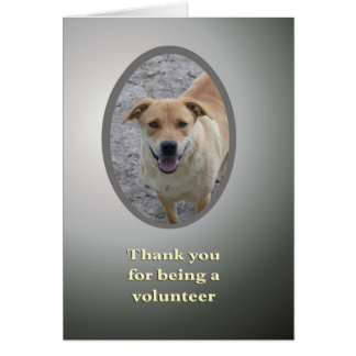 Thanks for being a volunteer greeting card