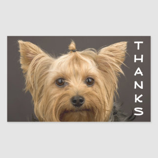 Thanks Yorkshire Terrier Puppy Dog Stickers