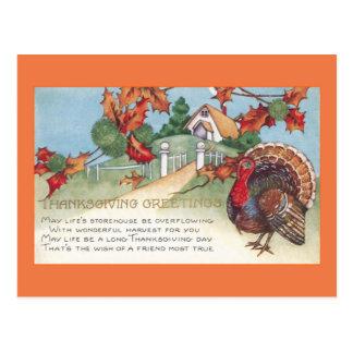 thanksgiving 1927 vintage turkey postcard