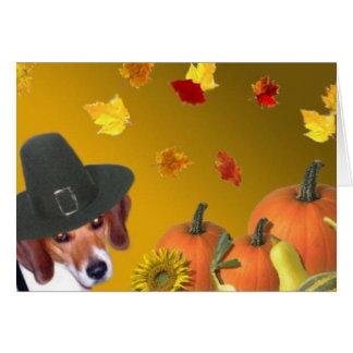 Thanksgiving 2005 card
