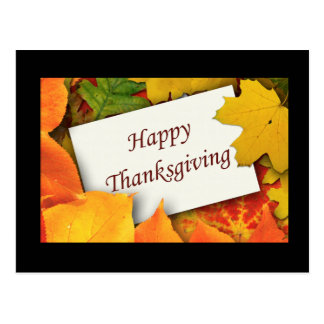 Thanksgiving Blessings Postcards