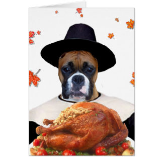 Thanksgiving boxer dog notecard
