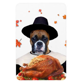 Thanksgiving Boxer Dog Rectangle Magnets