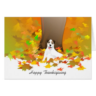 Thanksgiving Card - Jack Russell Dog Thanksgiving