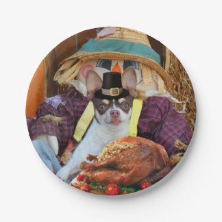 Thanksgiving chihuahua dog 7 inch paper plate