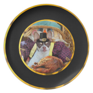 Thanksgiving chihuahua dog dinner plate