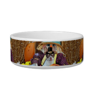 Thanksgiving Chihuahua dog Pet Bowl