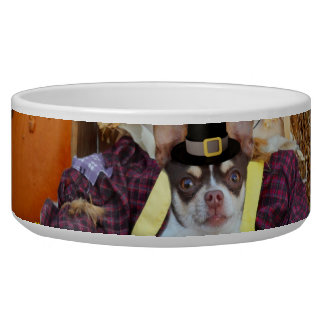 Thanksgiving Chihuahua dog Pet Food Bowls