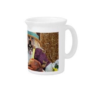 Thanksgiving chihuahua dog pitchers