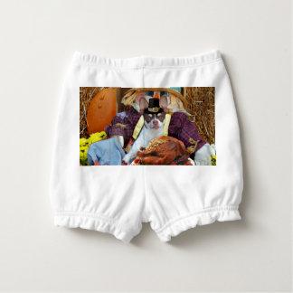Thanksgiving chihuahua dog diaper cover