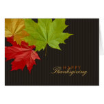 Thanksgiving Colourful Maple Leaves card