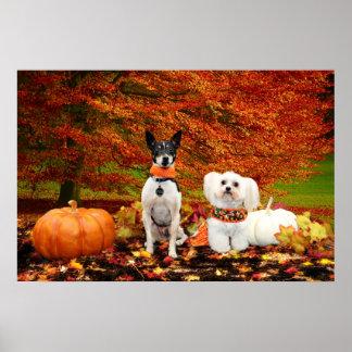 Thanksgiving de chute - Fox Terrier de Monty et