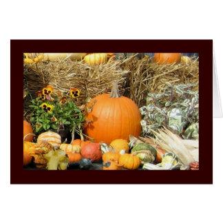 Thanksgiving Display Card