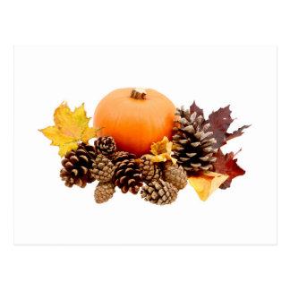 Thanksgiving / fall still life postcard