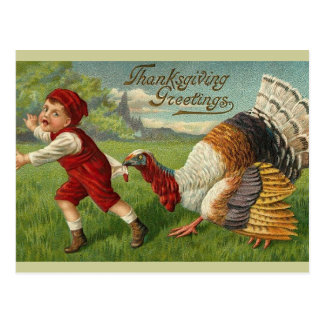 Thanksgiving Greetings Post Cards