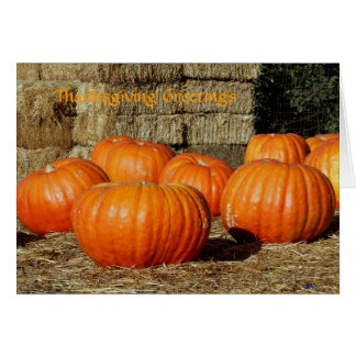 Thanksgiving greetings with pumpkins card