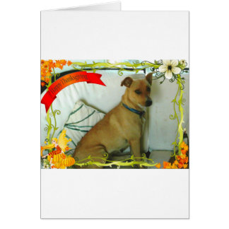 Thanksgiving items greeting card