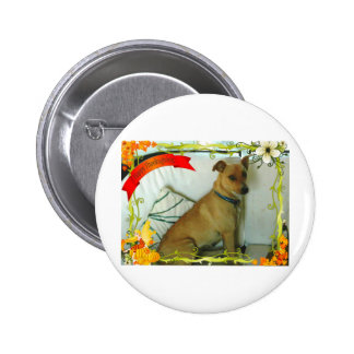Thanksgiving items pinback buttons