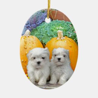 Thanksgiving Maltese puppies Ceramic Ornament