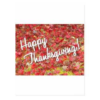 thanksgiving post cards