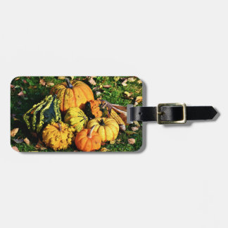 Thanksgiving Scene with Pumpkins-Corn-Gourds Luggage Tag