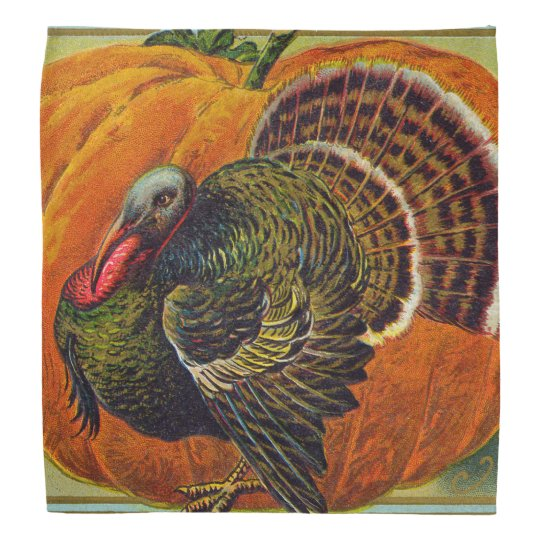 Thanksgiving Turkey in front of a Orange Pumpkin Bandana
