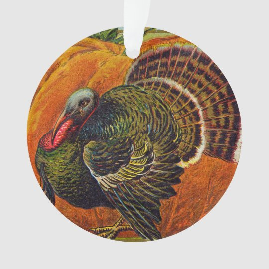 Thanksgiving Turkey in front of a Orange Pumpkin Ornament