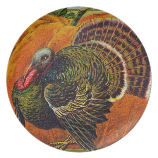 Thanksgiving Turkey in front of a Orange Pumpkin Plate