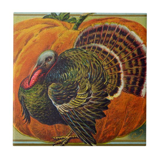 Thanksgiving Turkey in front of a Orange Pumpkin Tile